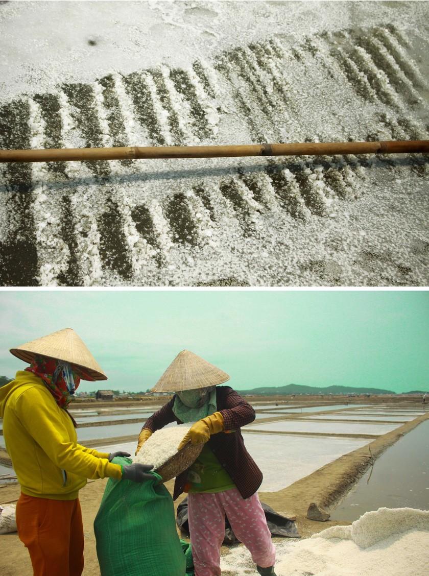 Sa Huynh salt farmers endure falling prices ảnh 7