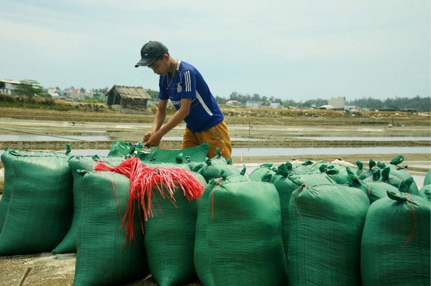 Sa Huynh salt farmers endure falling prices ảnh 8