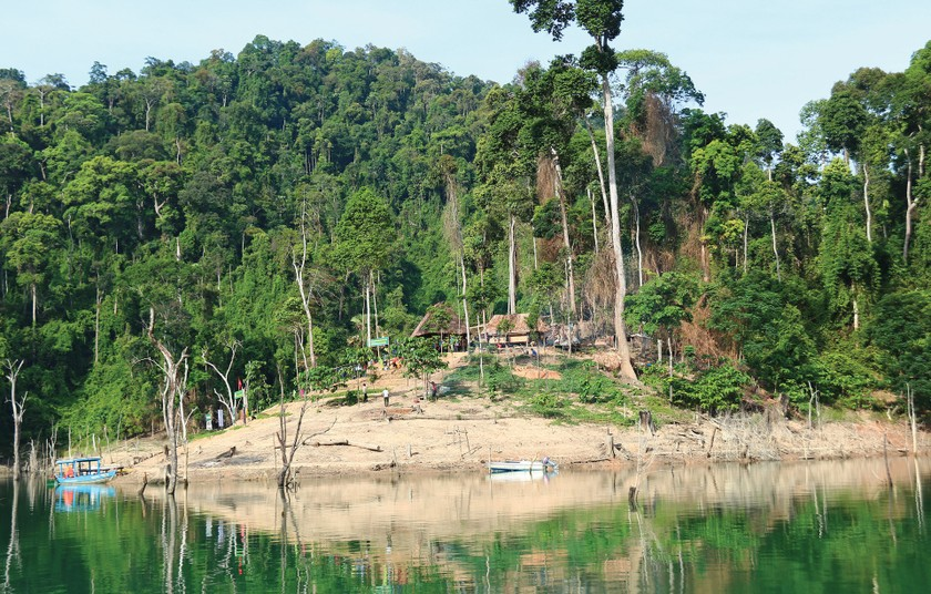 Quang Nam Province plans to turn Song Thanh Nature Reserve into national park ảnh 2