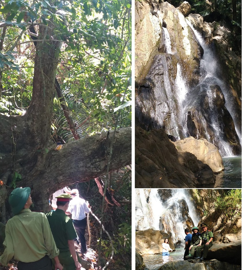 Quang Nam Province plans to turn Song Thanh Nature Reserve into national park ảnh 7