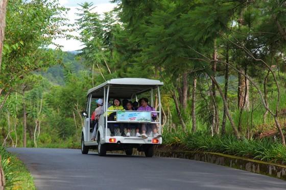 Travelers flock to Da Lat for some cool fresh air, avoid summer heat ảnh 7