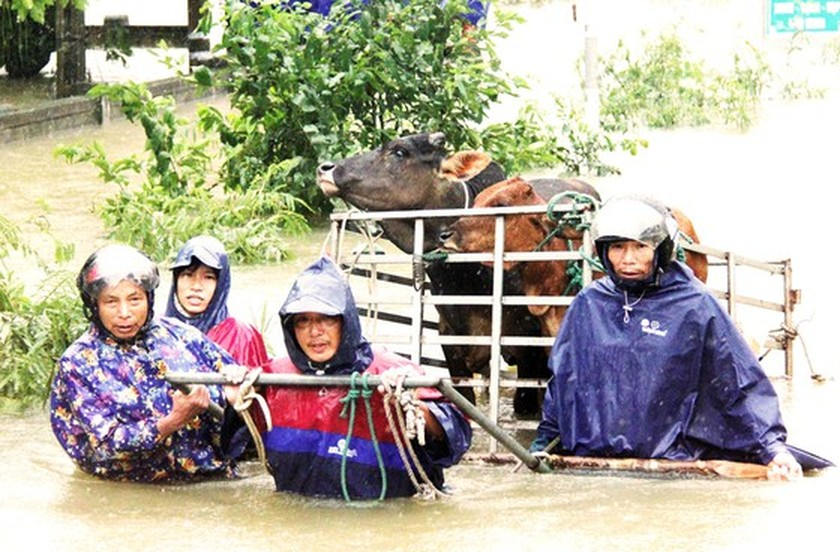 People nationwide extends solidarity with flood victims ảnh 1