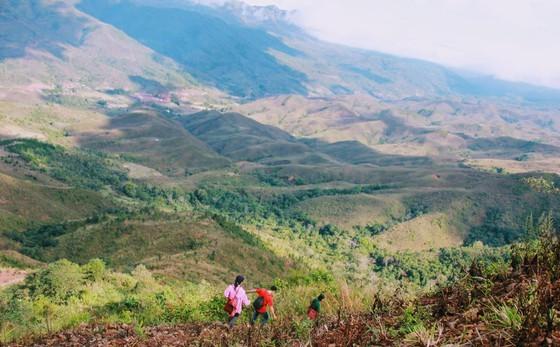Research reveals trends in Vietnamese travelers' behavior ảnh 1