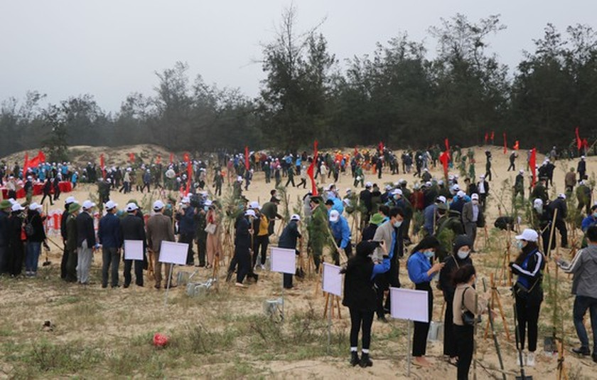 Annual Tet tree-planting campaign launched nationwide ảnh 2