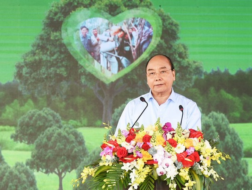 Phu Yen to be listed in country's top tree-covered localities: PM ảnh 1