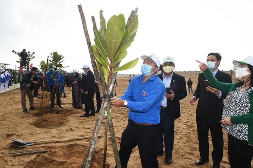 Phu Yen to be listed in country's top tree-covered localities: PM ảnh 3