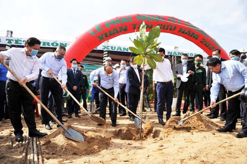 Phu Yen to be listed in country's top tree-covered localities: PM ảnh 7