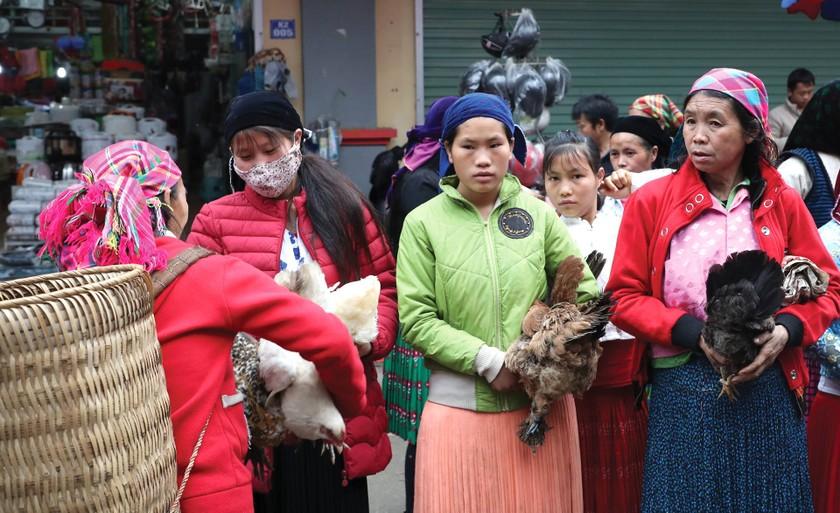 Beauty of women in Ha Giang Province's plateau of rocks ảnh 3