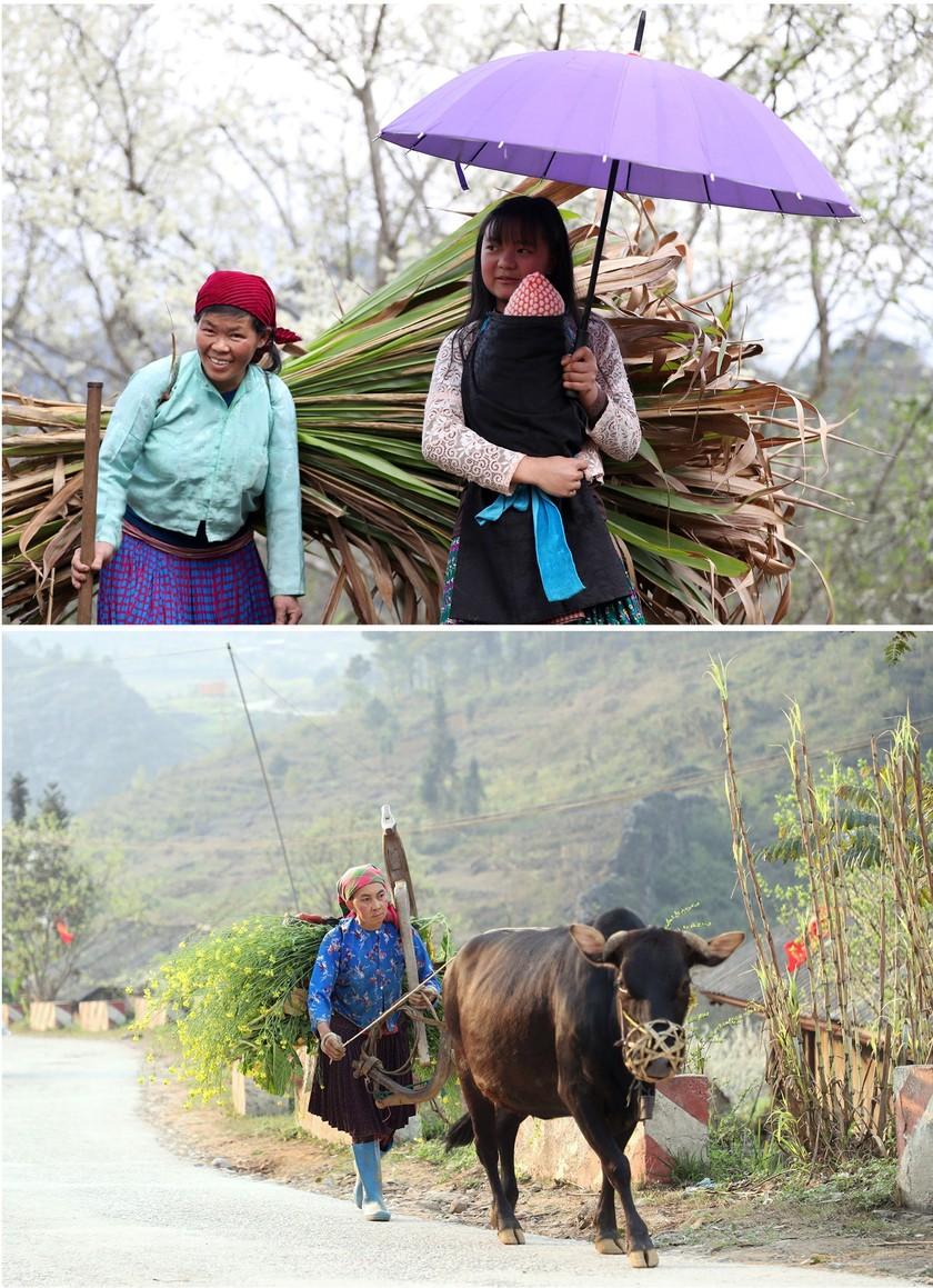 Beauty of women in Ha Giang Province's plateau of rocks ảnh 7