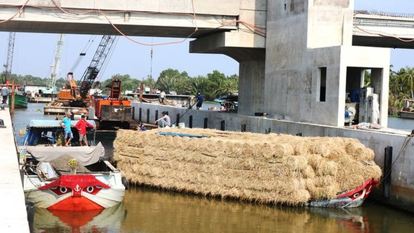 Irigation system in Mekong Delta in a rush to ensure proposed schedule ảnh 3