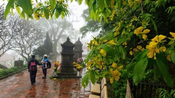 Majestic beauty of Sacred Yen Tu Mountain ảnh 6