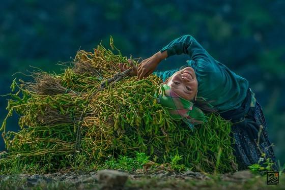 Vietnam in various colors ảnh 5
