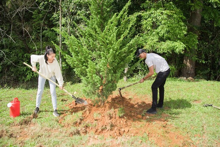Beauty queens participate in 50-million tree planting campaign in Lam Dong ảnh 2