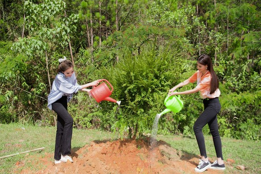 Beauty queens participate in 50-million tree planting campaign in Lam Dong ảnh 3