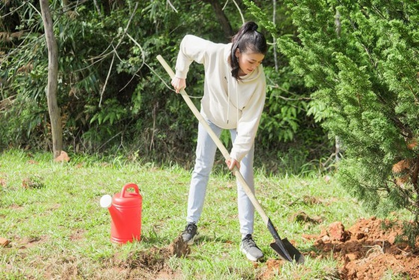Beauty queens participate in 50-million tree planting campaign in Lam Dong ảnh 5