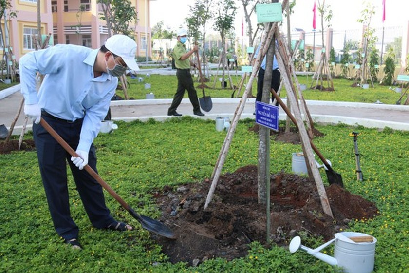 Tree-planting campaign launched in HCMC to mark Uncle Ho's birthday ảnh 1