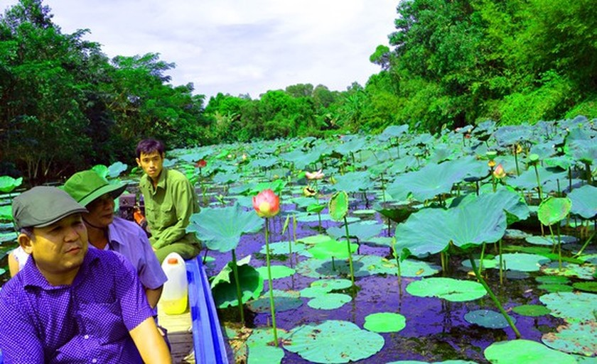 Mekong Delta's unique nature reserve to be opened for visitors' exploration ảnh 1