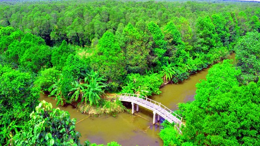 Mekong Delta's unique nature reserve to be opened for visitors' exploration ảnh 2