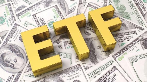 Investors turn to ETFs to limit risks ảnh 1