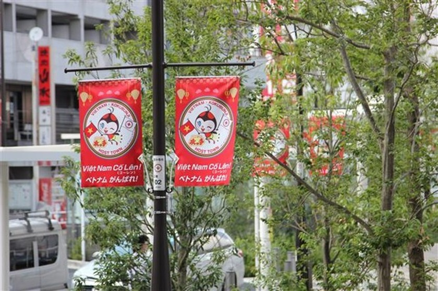 Japanese city popularises Vietnam ahead of Paralympic Games ảnh 1