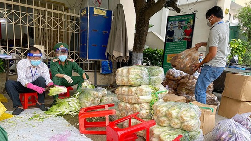 HCMC's government agencies create work plan for new normal state ảnh 2