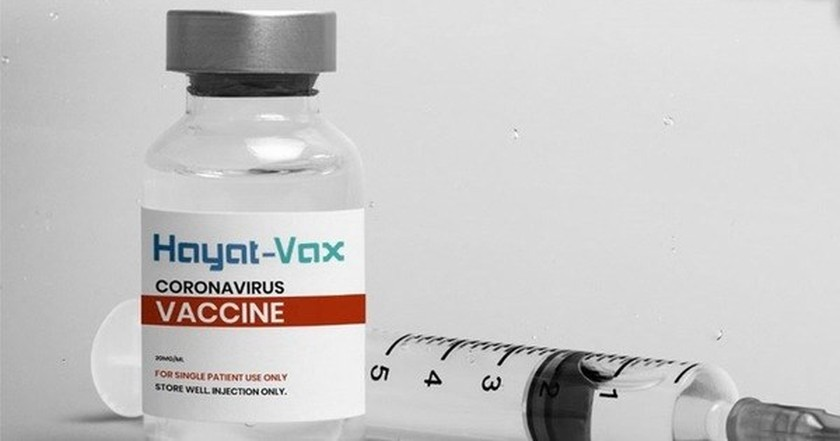 Vietnam conditionally approves Hayat-Vax for emergency use ảnh 1