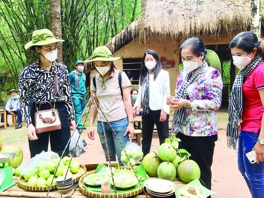 HCMC offers experimental tour visiting Can Gio, Cu Chi to frontline force ảnh 1
