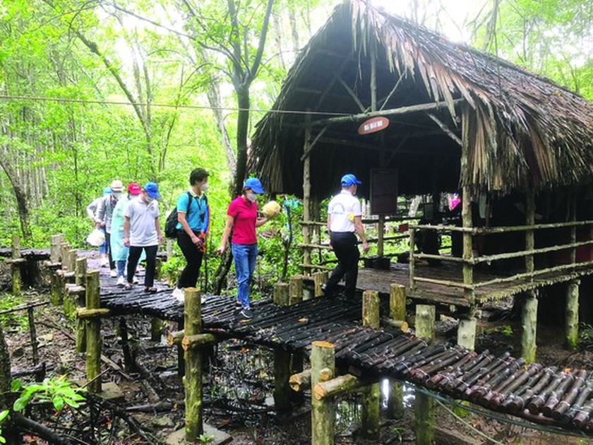 HCMC offers experimental tour visiting Can Gio, Cu Chi to frontline force ảnh 2