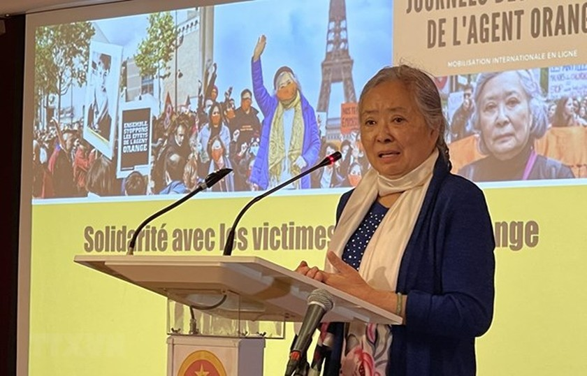 Ambassador hails Collectif Vietnam Dioxine's support for AO/dioxin victims ảnh 1