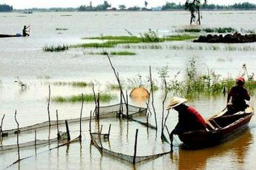 Flooding arrives late, affecting local people's life in Mekong Delta ảnh 1